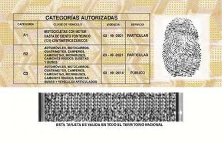 La nueva licencia de conduccion 2
