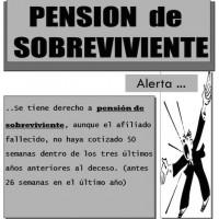 Pension de Sobrevivientes jpg